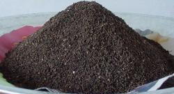 AYSUN THE SÜTÇÜ - Aysun The Sütçü (Yenesol) Solucan Gübresi 1kg