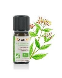Florame - Florame Organik Karanfil- Clove Bud Yağı 10 ml