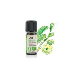 Florame - Florame Organik Limon Okaliptus Yağı - Eucalyptus Citriodora 10ml