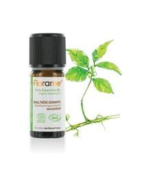Florame - Florame Organik Wintergreen Esansiyel Yağı - Gaultheria Procumbens 10 ml