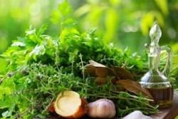 Taze Atölye - Özlem Saraç ile Mutfakta Aromaterapi